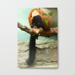 Sleeping Monkey Photography Print Metal Print