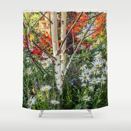 Rural landscape with a birch tree Shower Curtain