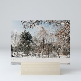 Winter Scene | Nature and Landscape Photography Mini Art Print