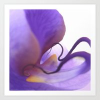 orchid Art Prints featuring Orchid  by Lena Weiss
