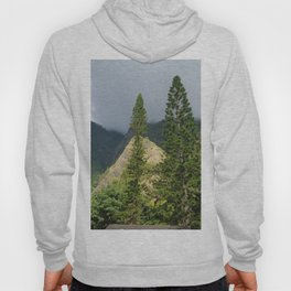 Hawaii Mountain and Forest Hoody
