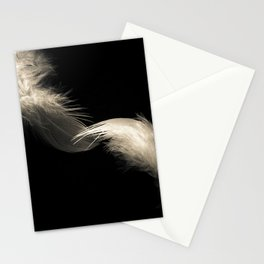 Two feathers in black and white Stationery Cards