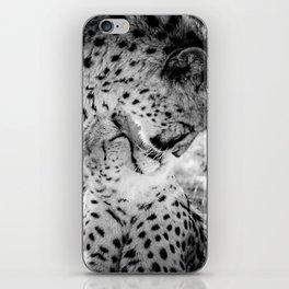 Cheetah Kisses iPhone Skin