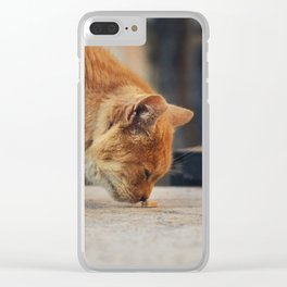 Toffee cat Clear iPhone Case