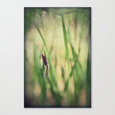 Getting ready to Rise and Shine Canvas Print