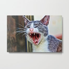 While at the Dentist Metal Print
