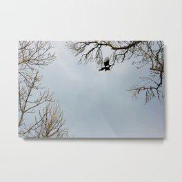 """En vuelo"" Metal Print"