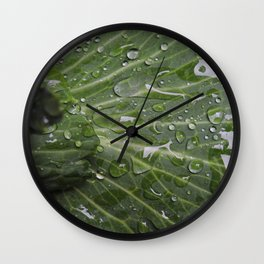 Nature's green and diamonds (2nd in the Cabbage collection) Wall Clock