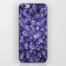 Aerial Pine iPhone & iPod Skin