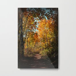 Wonderful pathway through the fall coloration. Metal Print