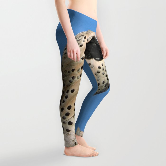 Northern Flicker Leggings