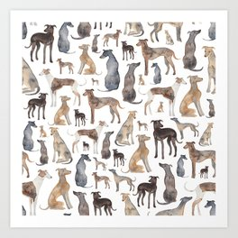 Greyhounds and Whippets Art Print