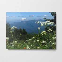 Alpine Flowers before Mt St Helens Metal Print