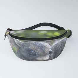 The Old Possum Fanny Pack