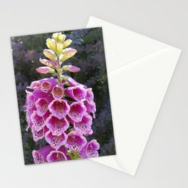 Gloves in summer!  Foxglove, Digitalis purpurea Stationery Cards