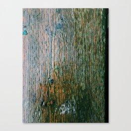 Wooden panel Canvas Print