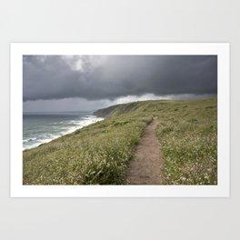 Point Reyes Rain Art Print