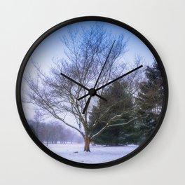 Winter Trees In Cedar Creek Park Wall Clock