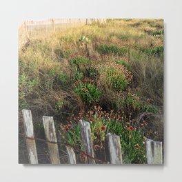 Native Season for Wildflowers (Updated) Metal Print