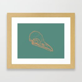 Bird Skull Framed Art Print