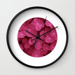 pink nasturtium leafs Wall Clock
