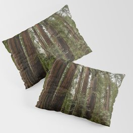 Redwood Forest Adventure VII - Nature Photography Pillow Sham