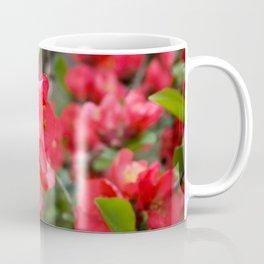 JAPANESE QUINCE Coffee Mug