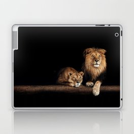 Lion and lioness, animals family. Portrait in the dark Laptop & iPad Skin