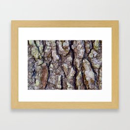 Woodsy Feeling Framed Art Print