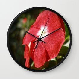 Close Up Of A Red Busy Lizzie Flower Wall Clock