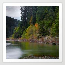 Autumn On Grizzly Creek Art Print