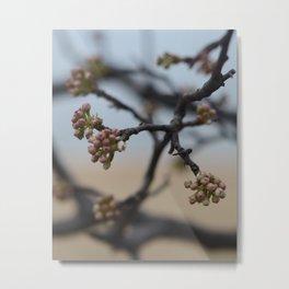 New Flowers Metal Print