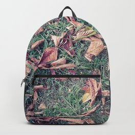 Autumn Leaves Before September Photography Nature Fall Colors Summer #GaneneKPhotography Backpack
