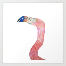 Flamingo. Flamingo art, Flamingo illustration. Art Print