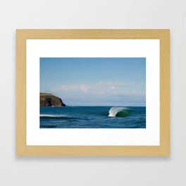 Southern Reef Framed Art Print