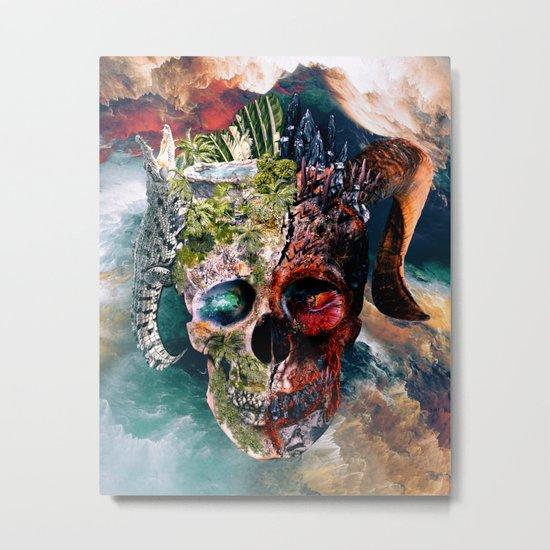 Two Face II Metal Print