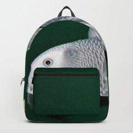 Parrot swing Backpack
