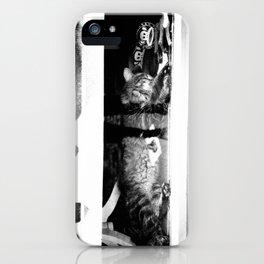 WINDOW KATZ iPhone Case