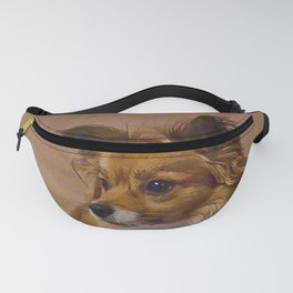 My Frisbee Fanny Pack