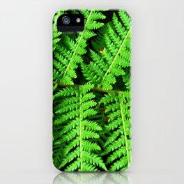 FF02 - fern iPhone Case