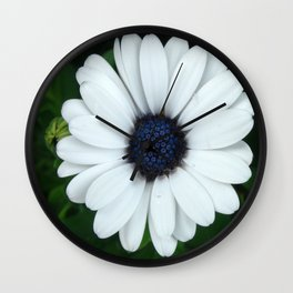 White African Daisy Tapestry Print Wall Clock