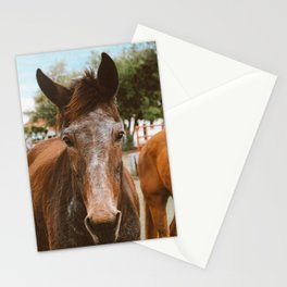 ears Stationery Cards