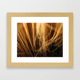 Creation Roads Framed Art Print