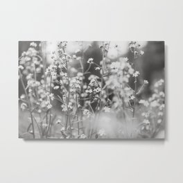 Mountain Wildflowers - Yellowstone Metal Print