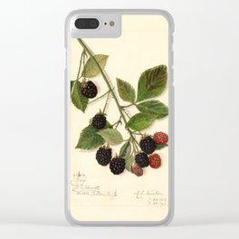 Blackberries - Joy Clear iPhone Case