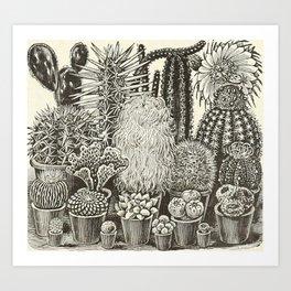 Cacti And Succulents Art Print