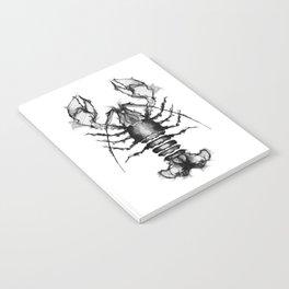 Lobster and Shrimps Notebook