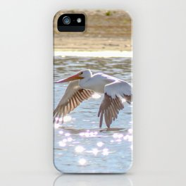Skimming The Water iPhone Case