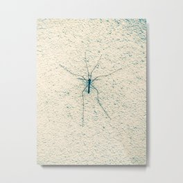 Big thin spider at a wall Metal Print