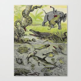 Hunting big game in the wilds of Africa - containing thrilling adventures of the famous Roosevelt Canvas Print